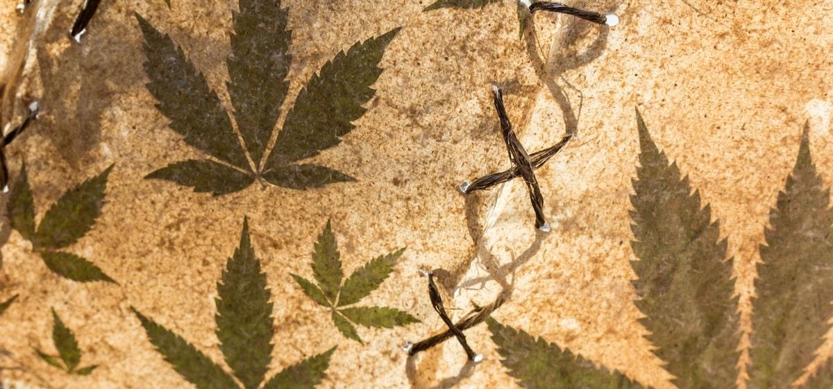 Keine medizinische Verwendung von Cannabis