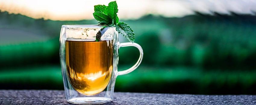 Wirkung von CBD Tee